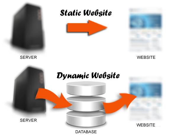 تفاوت سایت استاتیک و داینامیک